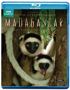 Madagascar: Land Where Evolution Ran Wild [Import]
