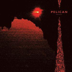 Nighttime Stories , Pelican