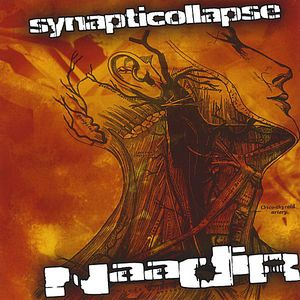 Synapticollapse