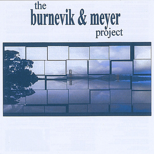 Burnevik & Meyer Project