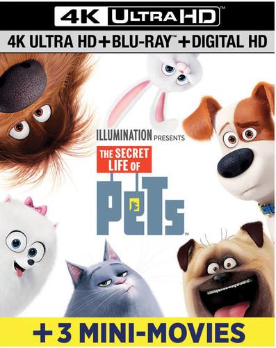 Secret Life of Pets [4K Ultra HD Blu-ray/Blu-ray]