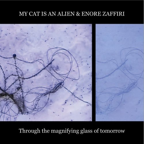 Through the Magnifying Glass of Tomorrow