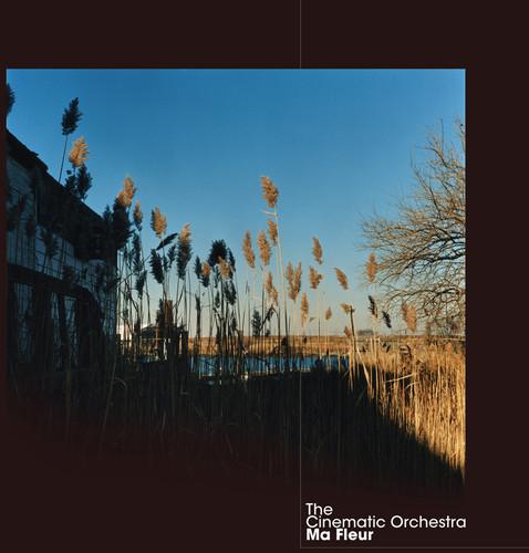 Cinematic Orchestra - Ma Fleur [Digipak]