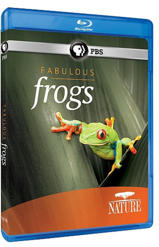Nature: Fabulous Frogs