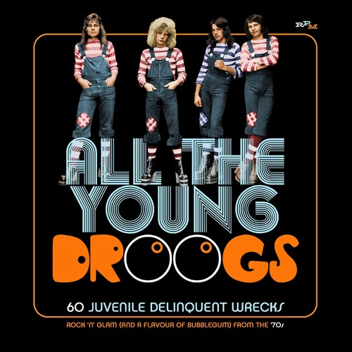 All The Young Droogs: 60 Juvenile Delinquent Wrecks /  Various [Import]