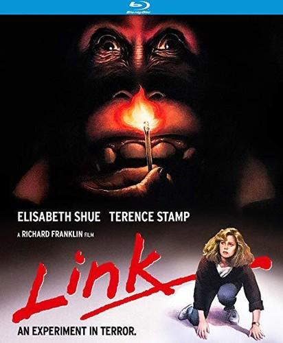 - Link (1986) / (Spec)