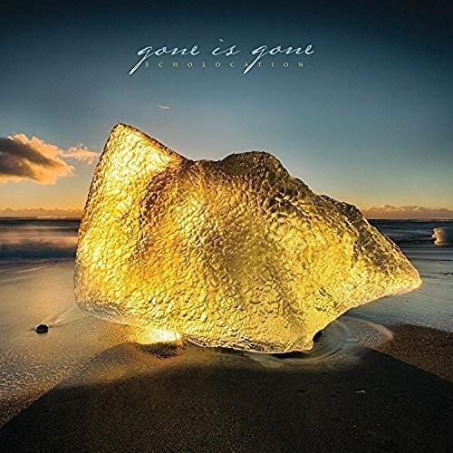 Gone Is Gone - Echolocation