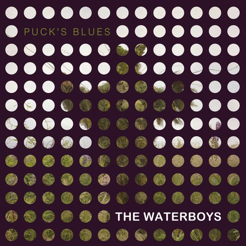The Waterboys - Puck's Blues