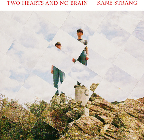 Two Hearts And Brain