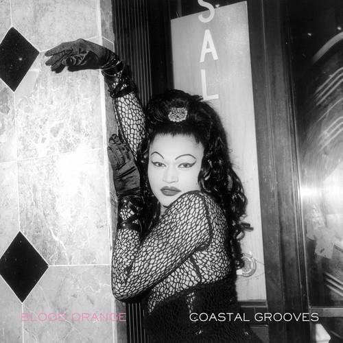 Blood Orange - Coastal Grooves [Vinyl]