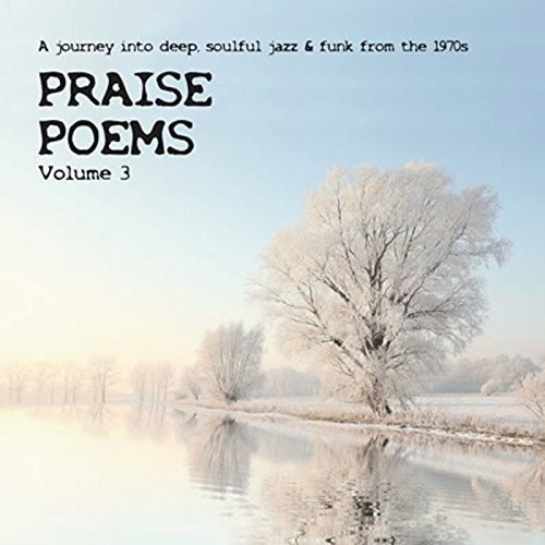 Praise Poems Vol 3 /  Various [Import]