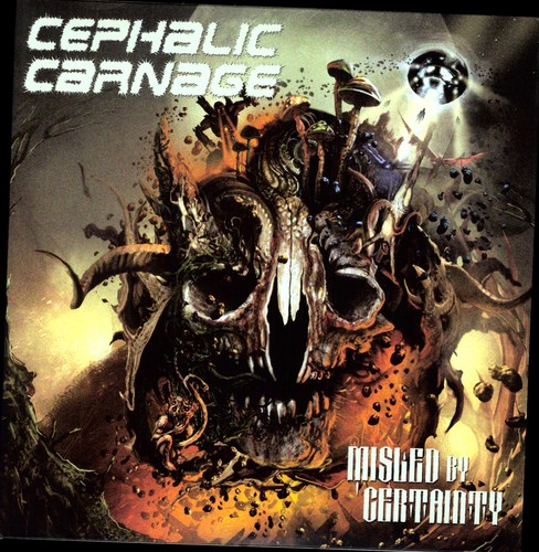 Misled By Certainty [Import]