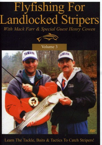 Fly Fishing for Landlocked Stripers