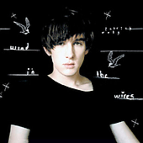 Patrick Wolf-Wind in the Wires