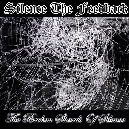 Broken Shards of Silence