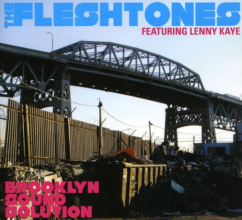 The Fleshtones - Brooklyn Sound Solution [Limited Edition] [Deluxe] [Digipak]