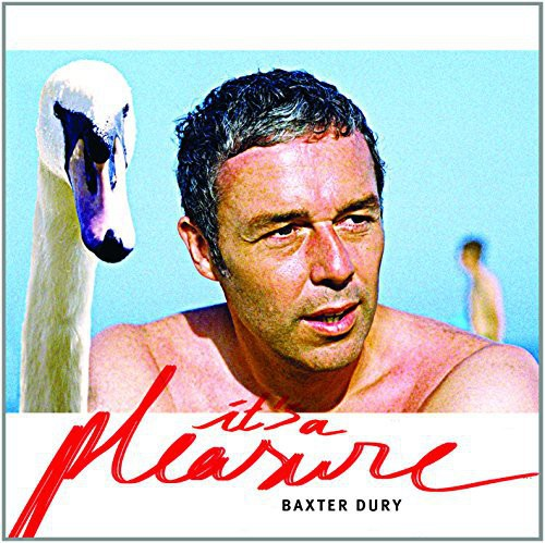 Baxter Dury - It's A Pleasure [Vinyl]
