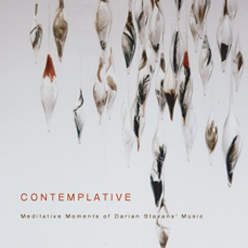Contemplative/ Meditative Moments of Darian Stavans