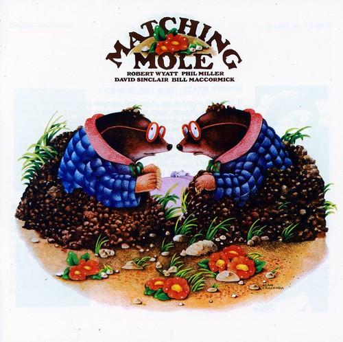 Matching Mole [Import]