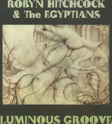 Robyn Hitchcock & The Egyptians - Luminous Groove