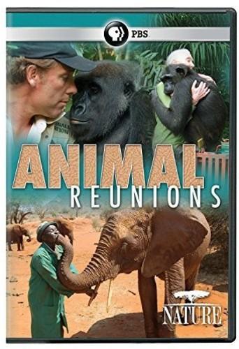 Nature: Animal Reunions