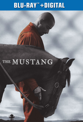The Mustang [Movie] - Mustang