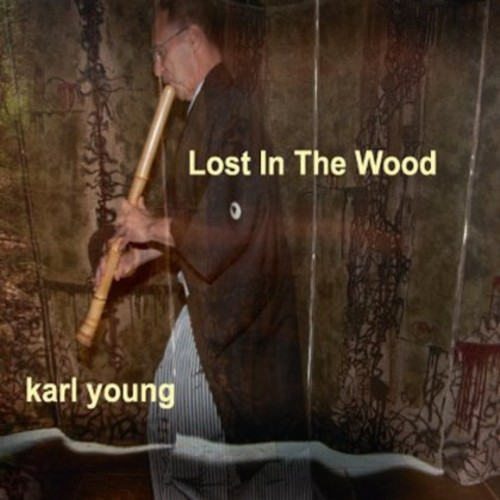 Lost in the Wood