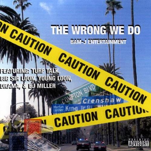 Wrong We Do /  Various