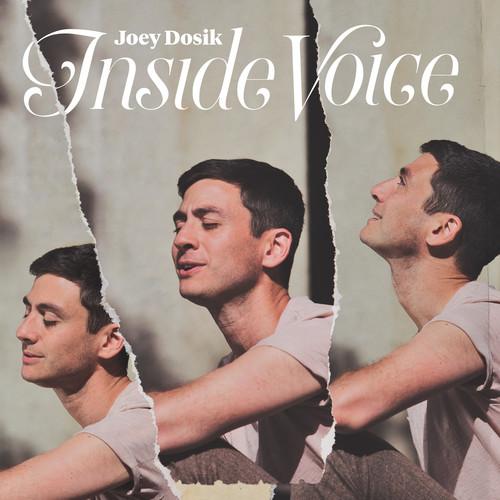 Joey Dosik - Inside Voice [Stone White LP]