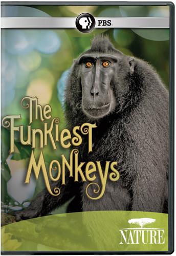 Nature: The Funkiest Monkeys