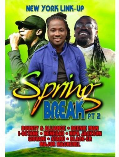 Spring Break Part 2