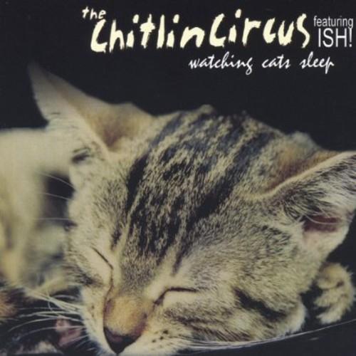 Watching Cats Sleep