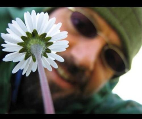 Come Un Fiore (Like a Flower)