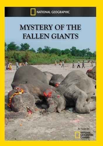 Mystery of the Fallen Giants