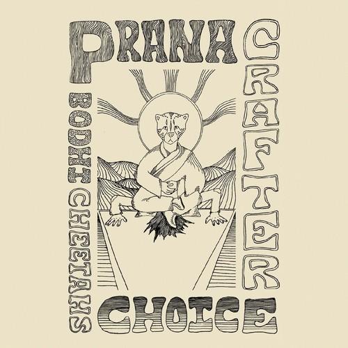 Bodhi Cheetah's Choice