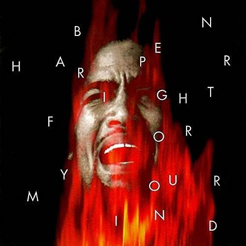Ben Harper - Fight For Your Mind [LP]