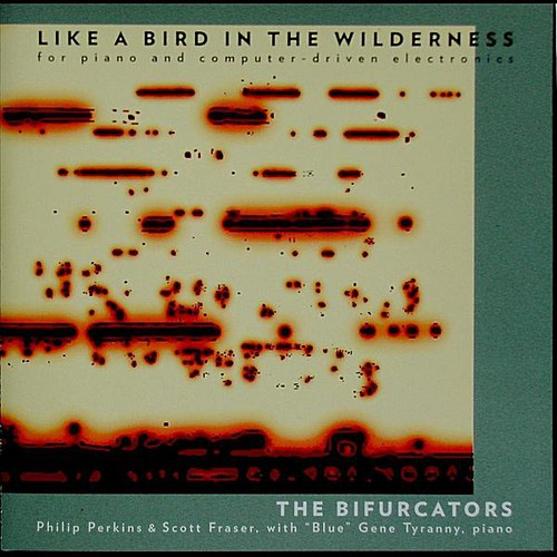 Like a Bird in the Wilderness