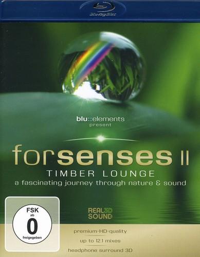 Forsenses II
