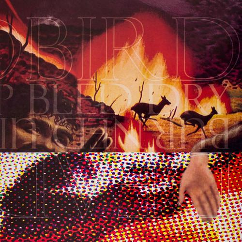 Deadbird /  Burned Up Bled Dry