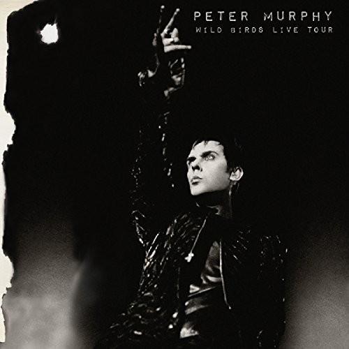 Peter Murphy - Wild Birds Live Tour