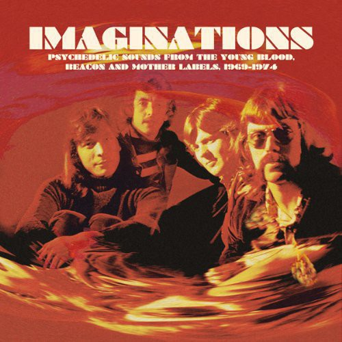 Imaginations: Psychedelic Sounds from the /  Various
