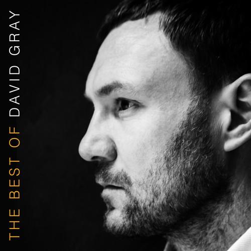 David Gray - The Best Of David Gray [Vinyl]