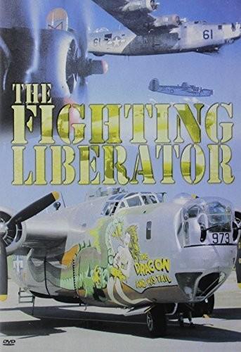 Fighting Liberator (B-24)