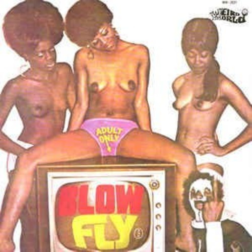 Blow Fly on TV