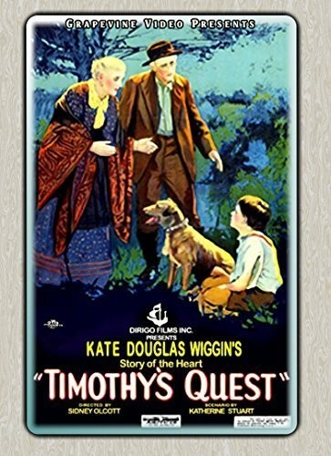 Timothy's Quest (1922)