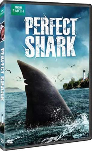 Perfect Shark