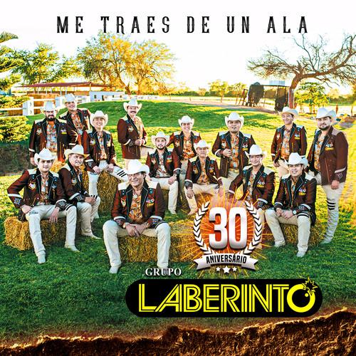 Grupo Laberinto - Me Traes De Un Ala