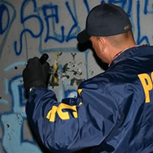 Gangland: Die Snitch Die