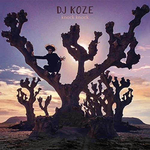 DJ Koze - Knock Knock [Vinyl Box Set]