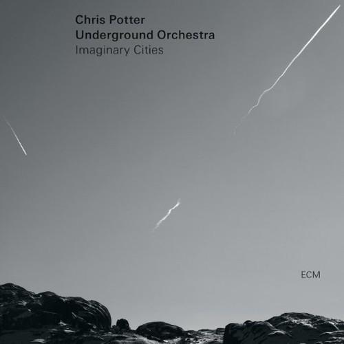 Chris Potter Orchestra